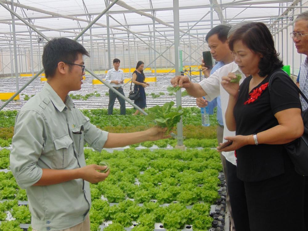 Phát triển nông nghiệp công nghệ cao: Cần thay đổi tư duy làm chính sách