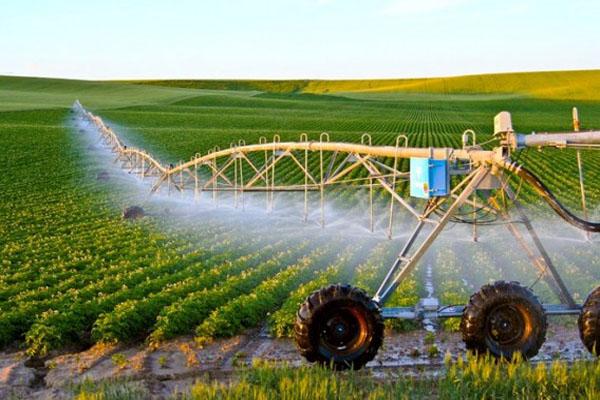 Sử dụng công nghệ thông tin và truyền thông trong nông nghiệp và thực phẩm