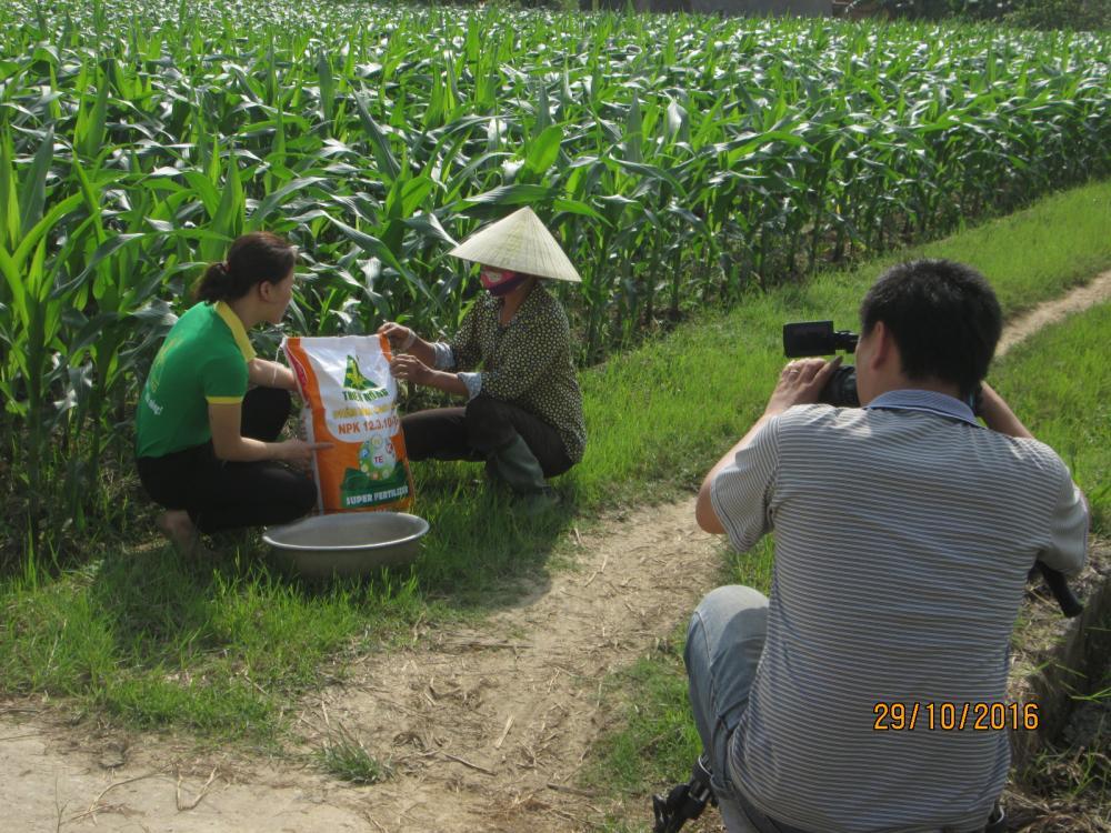 Thanh Hóa: Hỗ trợ nông dân hơn 10 tỷ sản xuất vụ đông 2017 – 2018