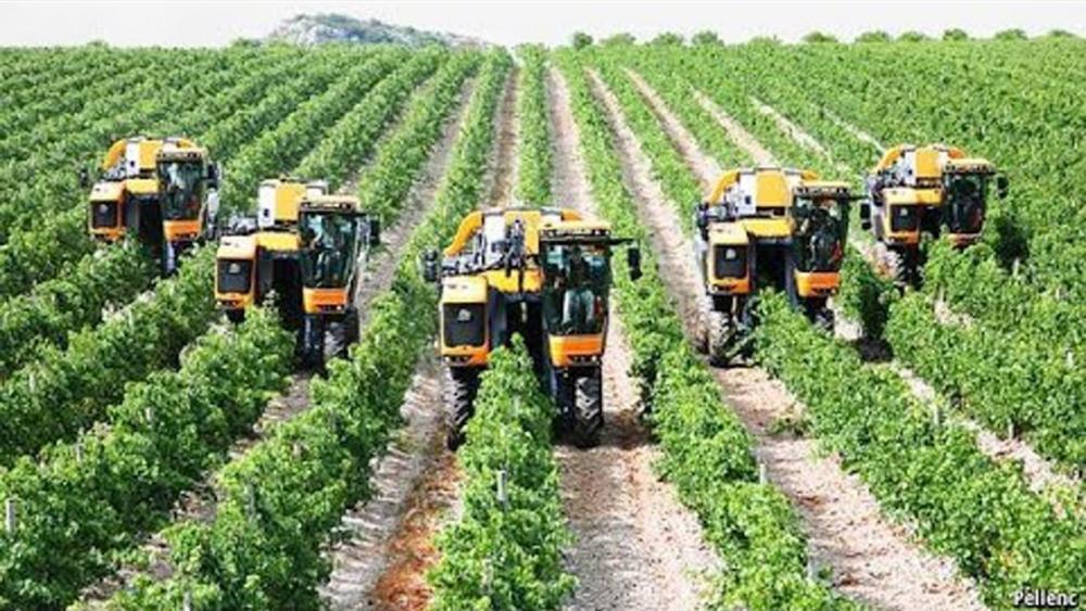Hệ thống canh tác bền vững tại Tây Ban Nha, Trung Quốc và Hàn Quốc được công nhận toàn cầu
