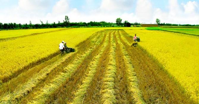 Năm 2018, nông nghiệp đặt mục tiêu tăng trưởng 3%, xuất khẩu 40 tỷ USD