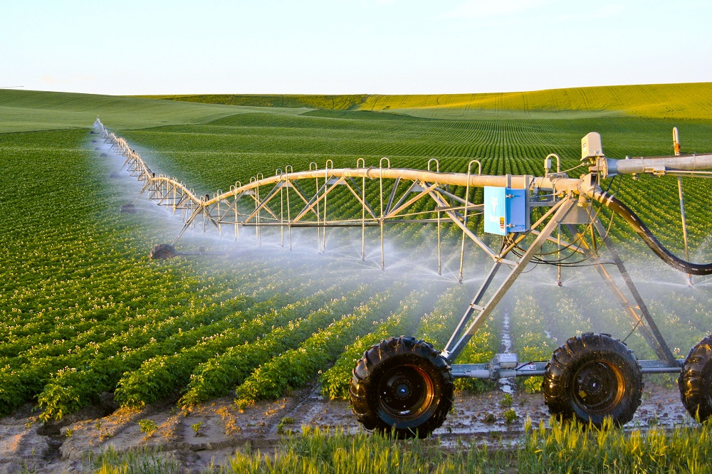 Tiêu chí công nhận tiến bộ kỹ thuật nông nghiệp
