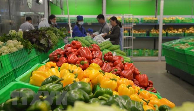 Kim ngạch xuất khẩu rau quả 8 tháng của Việt Nam tăng hơn 14%
