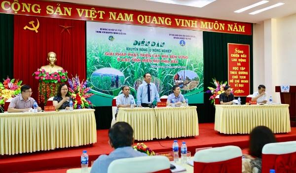 Giải pháp phát triển cây mía bền vững ở các tỉnh miền núi phía Bắc