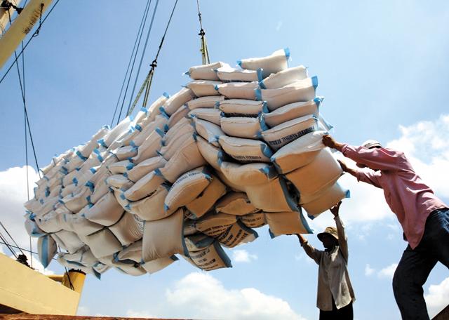 Nâng tầm cạnh tranh của gạo Việt: Sớm xây dựng thương hiệu