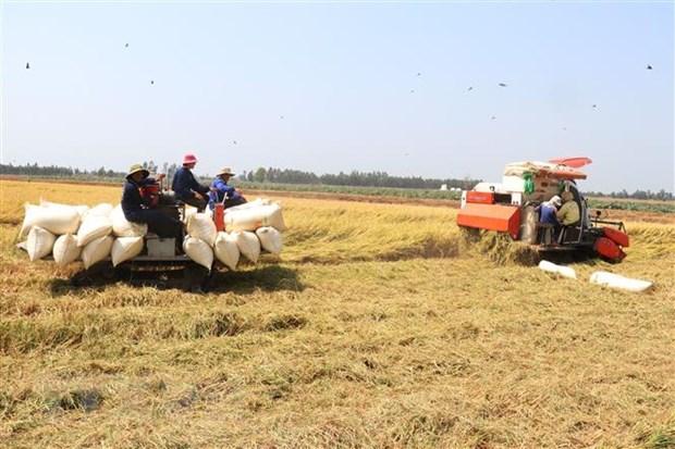 Nông nghiệp với vai trò trụ đỡ cho nền kinh tế Việt Nam