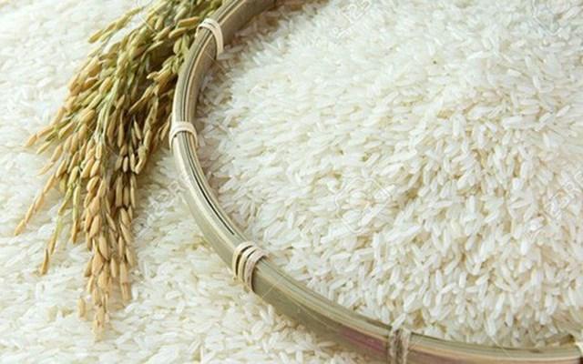 Xuất khẩu gạo trở lại: Tín hiệu vui cho người dân và doanh nghiệp