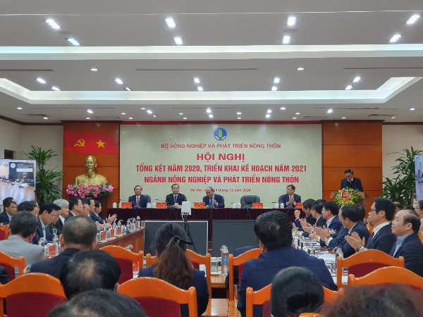 Ngành nông nghiệp Việt Nam đạt kết quả xuất khẩu ngoạn mục trong năm 2020 đầy biến động